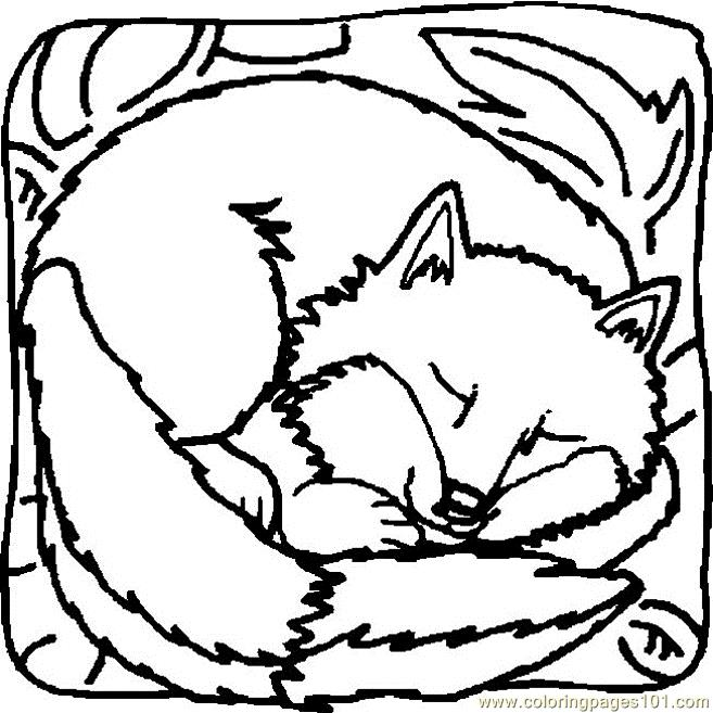 Coloring Pages Of Sleeping Animals : Fox sleeping coloring page free pages