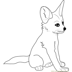 fennec fox coloring page - little fox coloring page free fox coloring pages