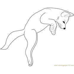 Fox Jumping Free Coloring Page for Kids