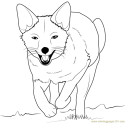 Fox Running Free Coloring Page for Kids