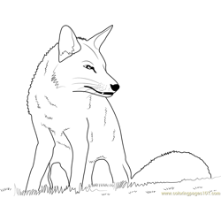 Fox Sitting Free Coloring Page for Kids
