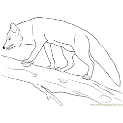 Fox on a Tree Trunk coloring page