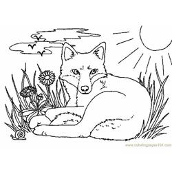 Fox Free Coloring Page for Kids