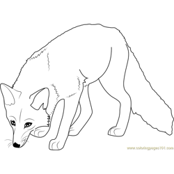 Hunting Fox Free Coloring Page for Kids