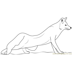 The Red Fox Free Coloring Page for Kids