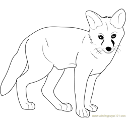 Young Fox Free Coloring Page for Kids
