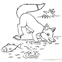 Fox hunting fish