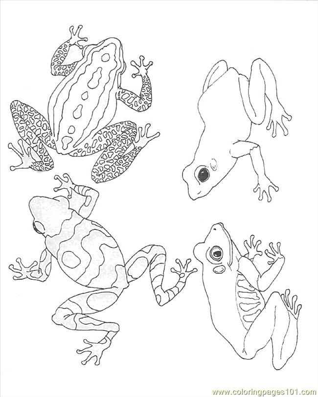 coloring frogs coloring page blue