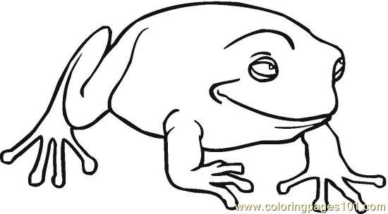 Frog (2) Coloring Page