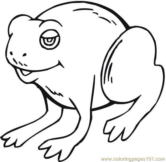 Frog (3) Coloring Page