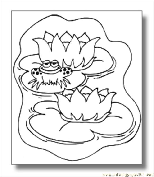 Frog Coloring Pages08