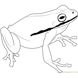 Green Frog Free Coloring Page for Kids