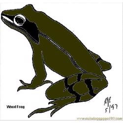 Woodfrog B coloring page