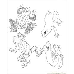 Coloring Frogs