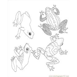 Coloring Frogs Reversed