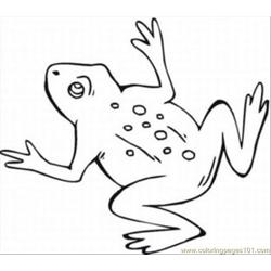 T The Frog Coloring Pages Med
