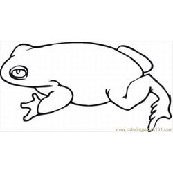 Ute Frog Coloring Pages 2 Lrg