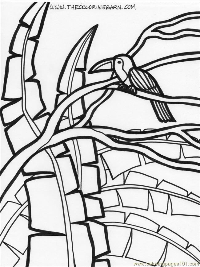 Rainforest Plants Coloring Pages Robertdee.org