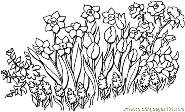 Flower Garden Colouring : Flower garden coloring page images
