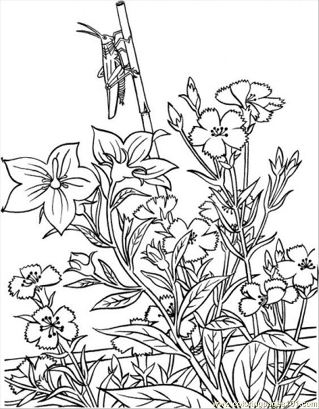 Opper In Garden Coloring Page Coloring Page - Free Garden Coloring ...