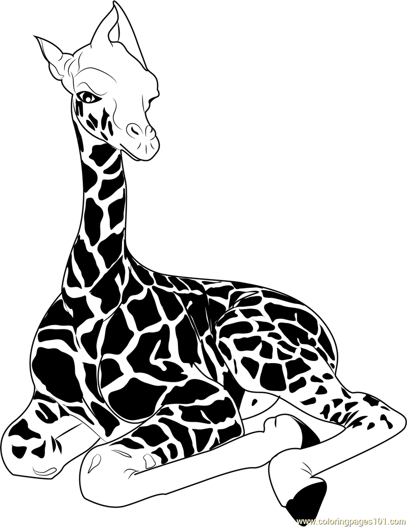 Baby Giraffe Sitting Coloring Page Free Giraffe Coloring Pages