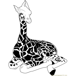 Baby Giraffe Sitting Free Coloring Page for Kids