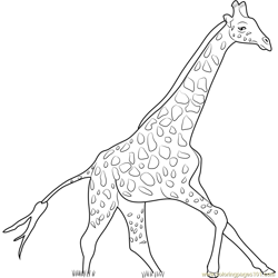Giraffe Running Free Coloring Page for Kids
