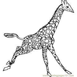 more giraffe coloring pages giraffe 09