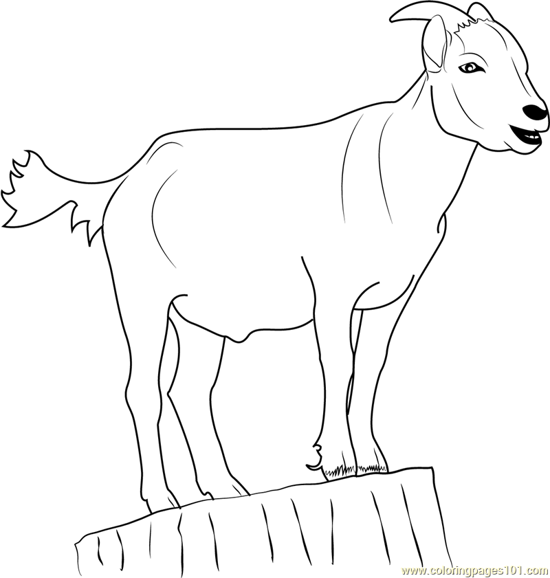 Goat Standing on Stump Coloring Page