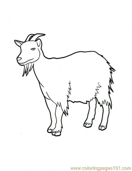 Goat beheard Coloring Page Free Goat Coloring Pages