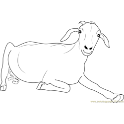 Goat Looking at You Free Coloring Page for Kids