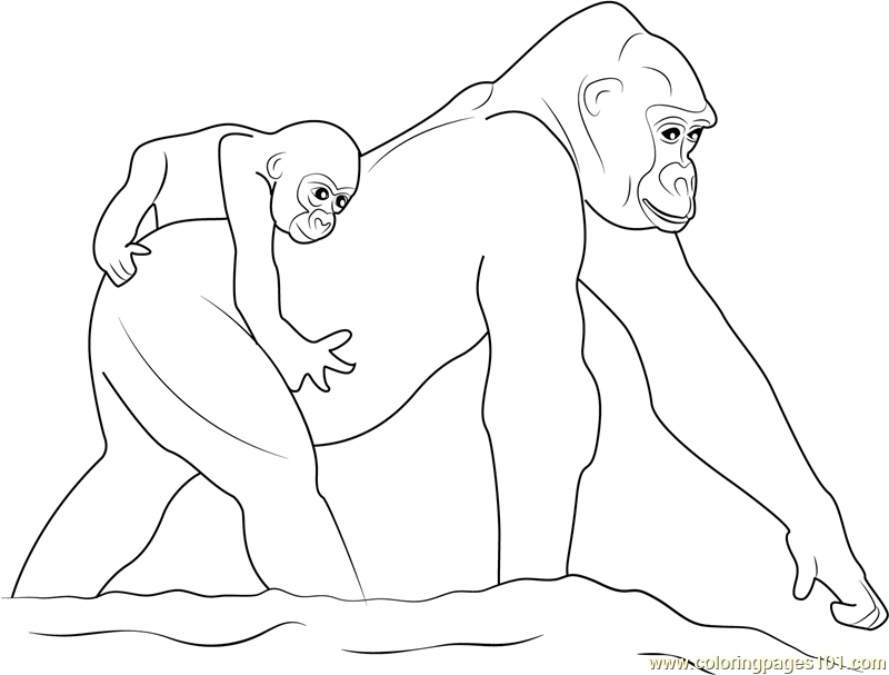 Gorilla With Baby Coloring Page Free Pages