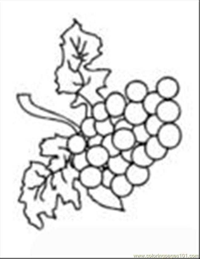 Food Grapes Bunch Coloring Page