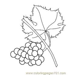 Grape (4) Free Coloring Page for Kids
