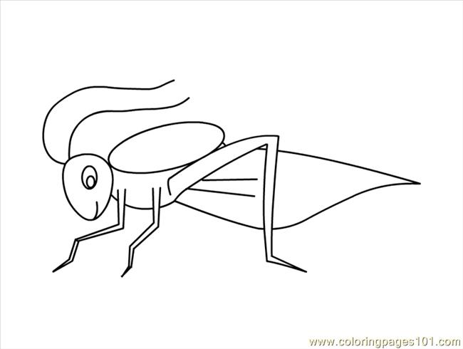 Grasshopper Coloring Page - Free Grasshopper Coloring Pages ...