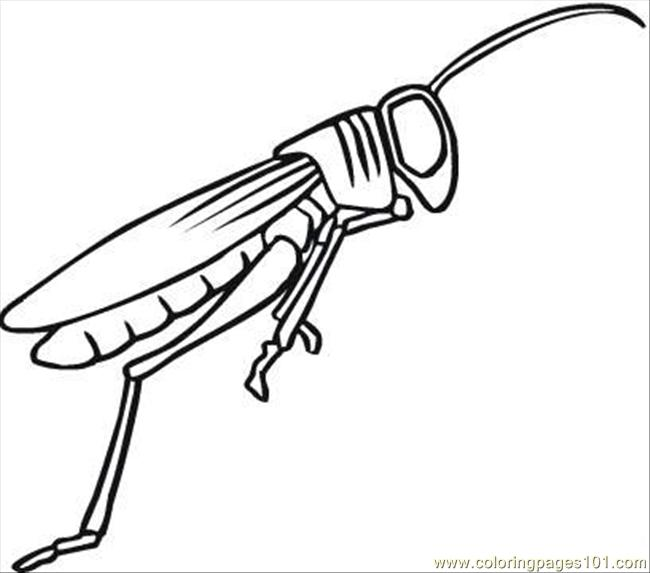 Grasshopper 10 Coloring Page