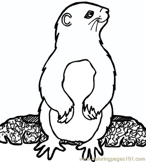 Groundhog luking side Coloring Page