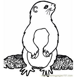 Groundhog luking side Free Coloring Page for Kids