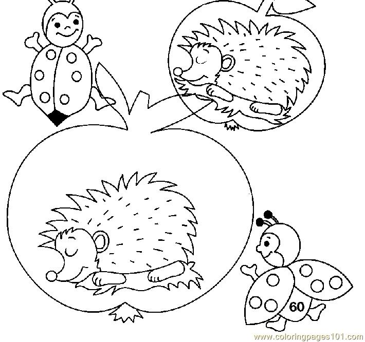 Hedgehogs sleeping Coloring Page