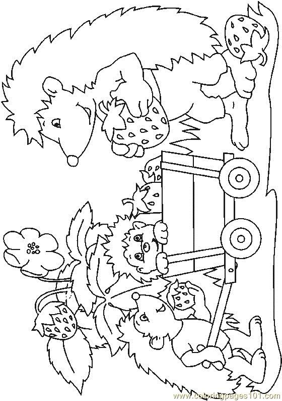 Hedgehog (10) Coloring Page