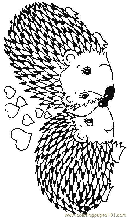 Hedgehog 17 Coloring Page Free Hedgehog Coloring Pages