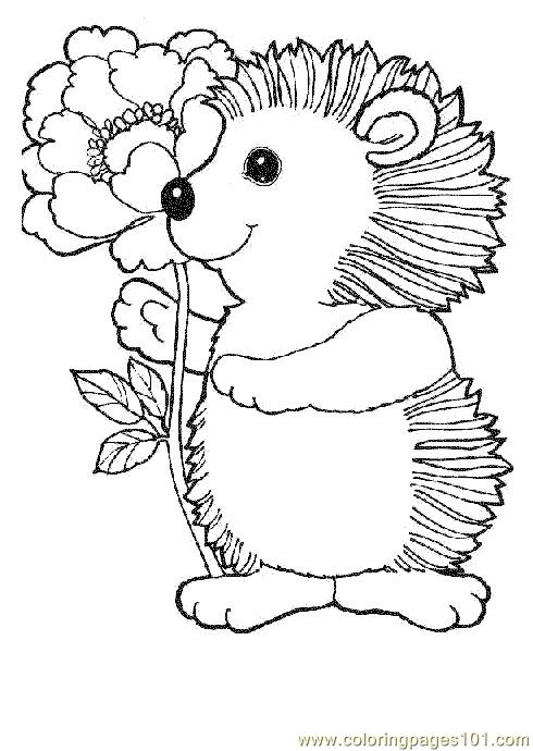 Hedgehogs 01 (1) Coloring Page