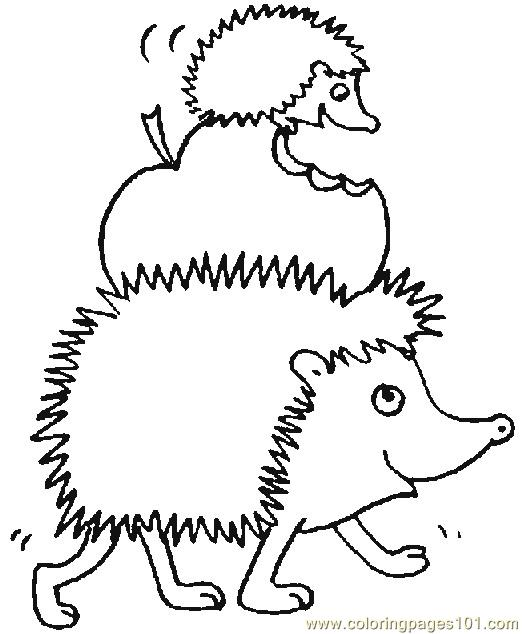 Hedgehogs 01 (20) Coloring Page