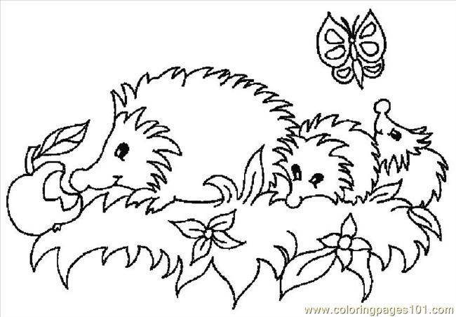 Hedgehogs 01 (27) Coloring Page