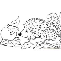Babby hedgehog seeing apple Free Coloring Page for Kids