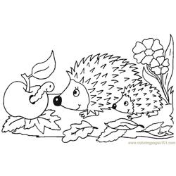 Babby hedgehog seeing apple inscet Free Coloring Page for Kids