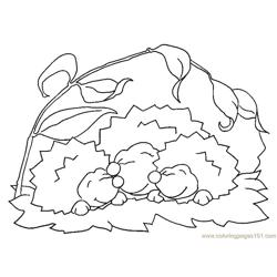 Hedgehogs happy mood Free Coloring Page for Kids