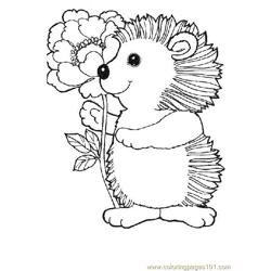 Hedgehog (20)