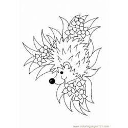 Hedgehogs 01 (25)