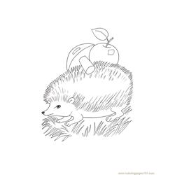 Hedgehog apple mushroom coloring page